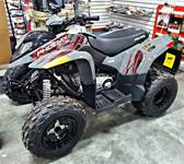2019 Polaris Industries Phoenix 200