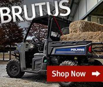 Brutus Commercial