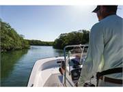 2017 Boston Whaler Montauk 170 (5)
