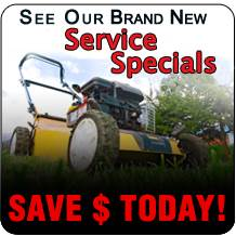 See our brand new service specials!