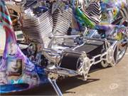 2005 Strokers Dallas Custom  (13)