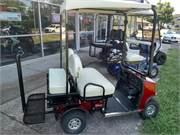 Cricket  Mini Golf Carts SX 3 (10)