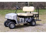 Cricket  Mini Golf Carts SX 3 (2)