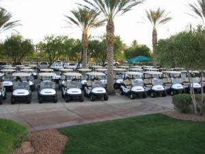 TFS Golf Cart Fleet Management