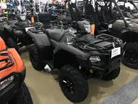 2019 Honda FOREMAN RUBICON DCT EPS DELUXE