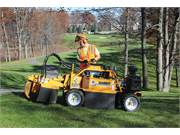 Stump Grinder Rental 3