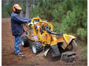 Stump Grinder Rental 5
