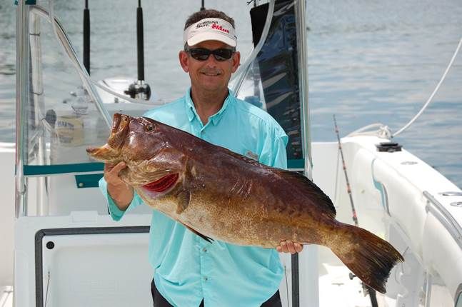 Rod grouper