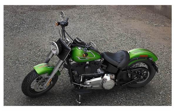 2015 Harley-Davidson® FLS Softail Slim® - Custom Color Option