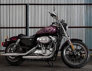 Sportster Iron 883 Model