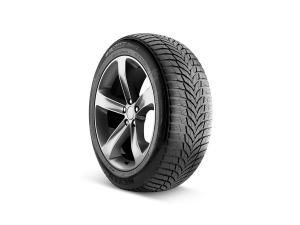 Winguard Sport 2 Tire