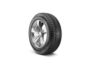 Winguard Ice Plus Tire