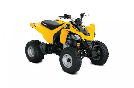 2018 Can-Am ATV DS 250