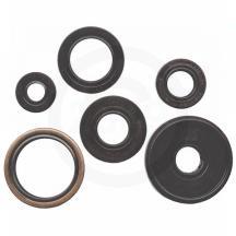 Winderosa 822134 Engine Oil Seal Kit