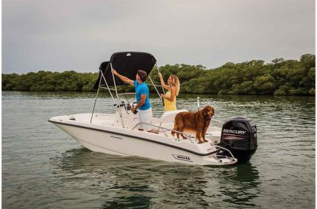 For Sale: 2018 Boston Whaler 170 Dauntless 17ft<br/>Trudeau's Sea Ray - Spokane