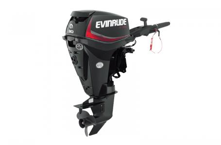 2018 Evinrude boat for sale, model of the boat is E30DGTLAF & Image # 1 of 1