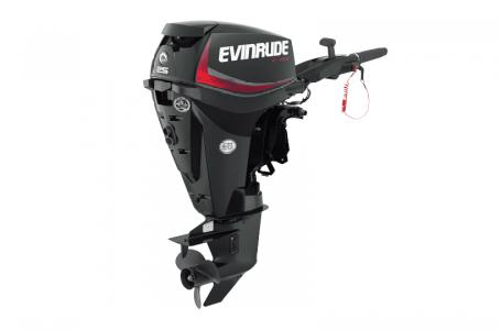 2018 Evinrude boat for sale, model of the boat is E25DGTEAF & Image # 1 of 1