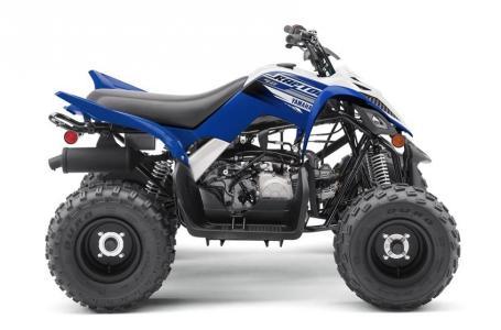 2019 Yamaha RAPTOR 90 for sale 149617