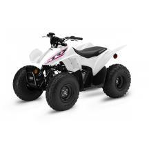 2019 Honda TRX90