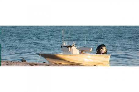 2019 Boston Whaler boat for sale, model of the boat is 150 Montauk & Image # 7 of 7
