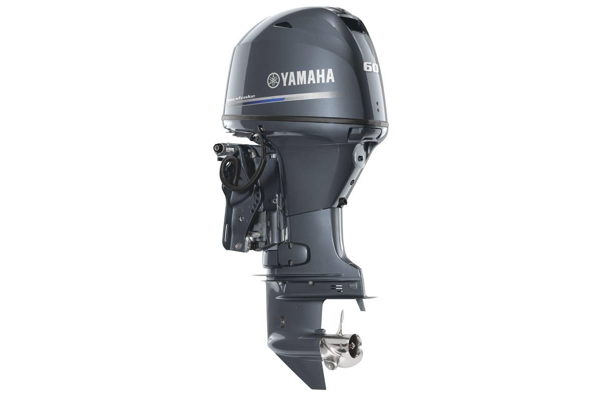 2019 Yamaha F60 Midrange - 20