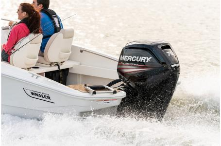 2021 Boston Whaler boat for sale, model of the boat is 160 Super Sport & Image # 7 of 7