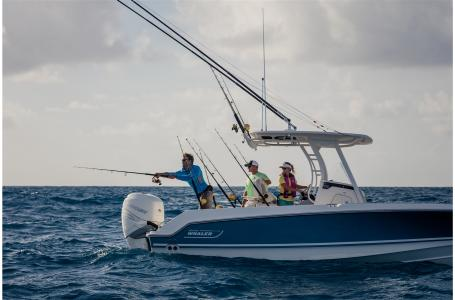 2021 Boston Whaler boat for sale, model of the boat is 230 Outrage & Image # 4 of 7