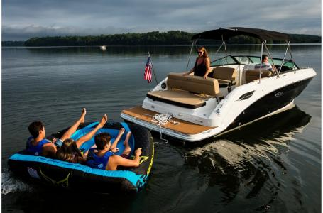 2021 Sea Ray boat for sale, model of the boat is SDX 250 & Image # 5 of 6