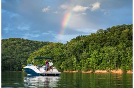 2022 Sea Ray boat for sale, model of the boat is SPX 230 & Image # 6 of 7