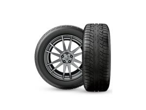 Advantage T/A® Sport Tire