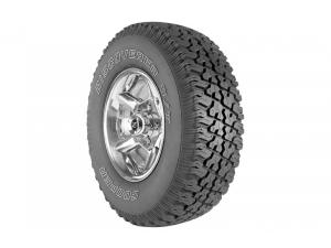 Discoverer S/T™ Light Truck Applications Tire