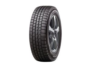 Winter Maxx Tire