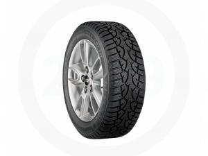 Altimax™ Arctic Tire