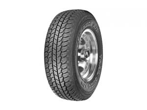 Trail Guide Radial A/P Tire
