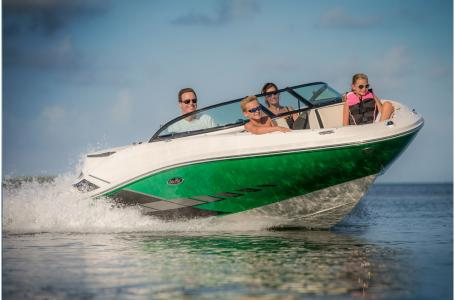 2015 Sea Ray boat for sale, model of the boat is 190 Sport OUTBOARD & Image # 3 of 16