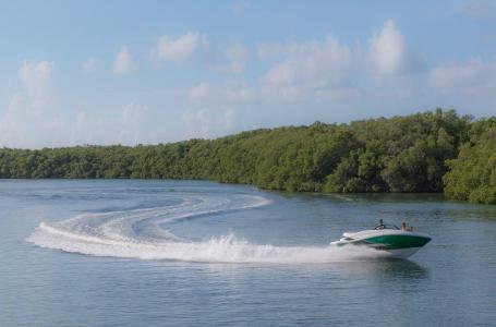 2015 Sea Ray boat for sale, model of the boat is 190 Sport OUTBOARD & Image # 10 of 16
