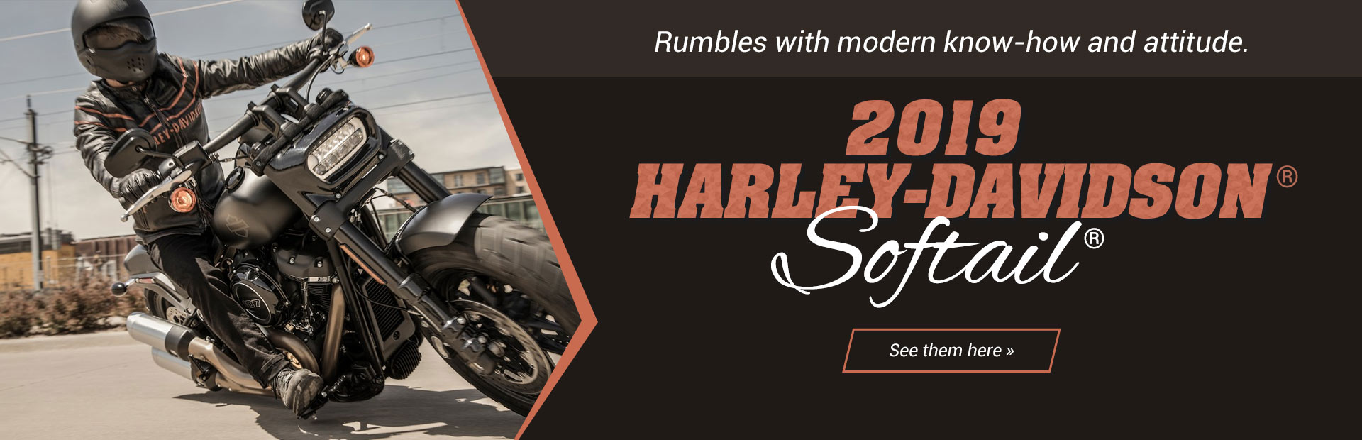 2019 Harley-Davidson® Softail®: Click here to view the models.