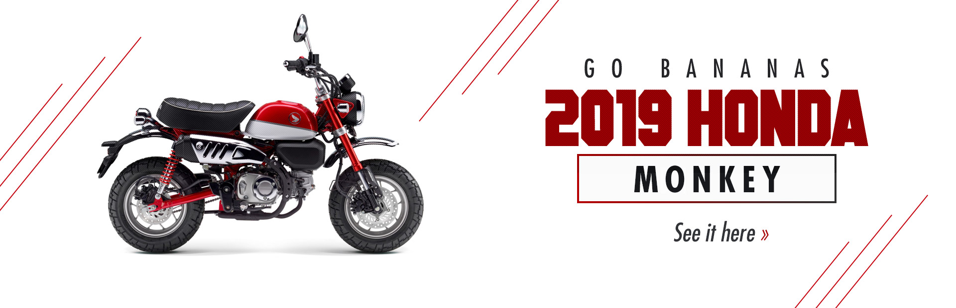 2019 Honda Monkey: Click here to view the model.