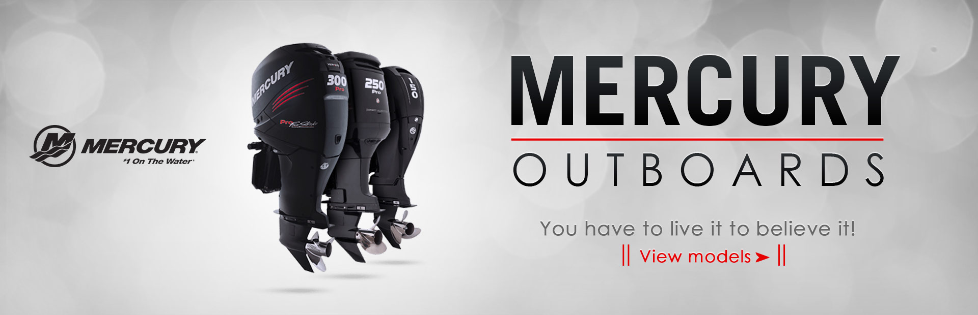 Click here to view Mercury outboard motors.