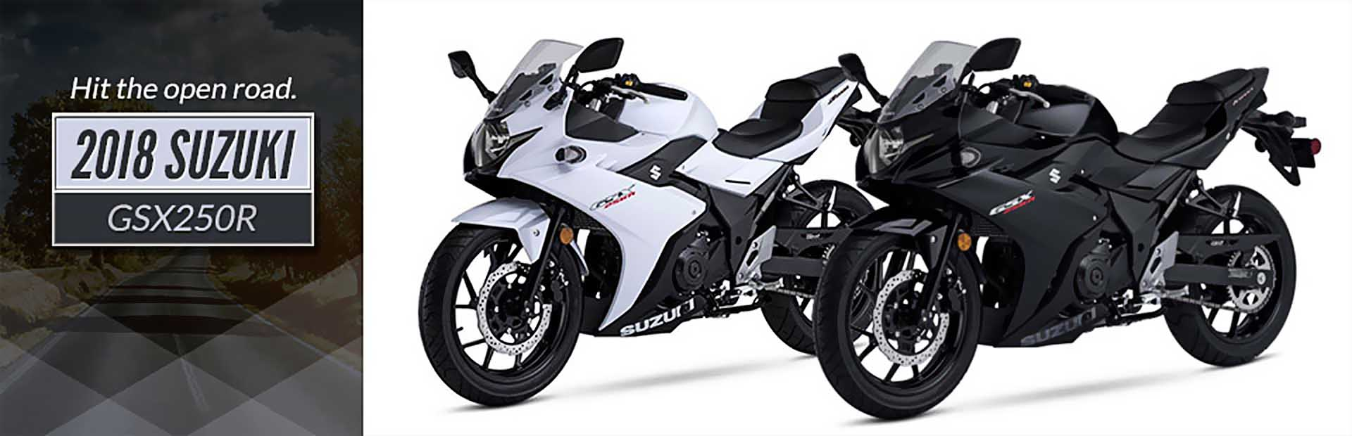 2018 Suzuki GSX250R: Click here to view the model.