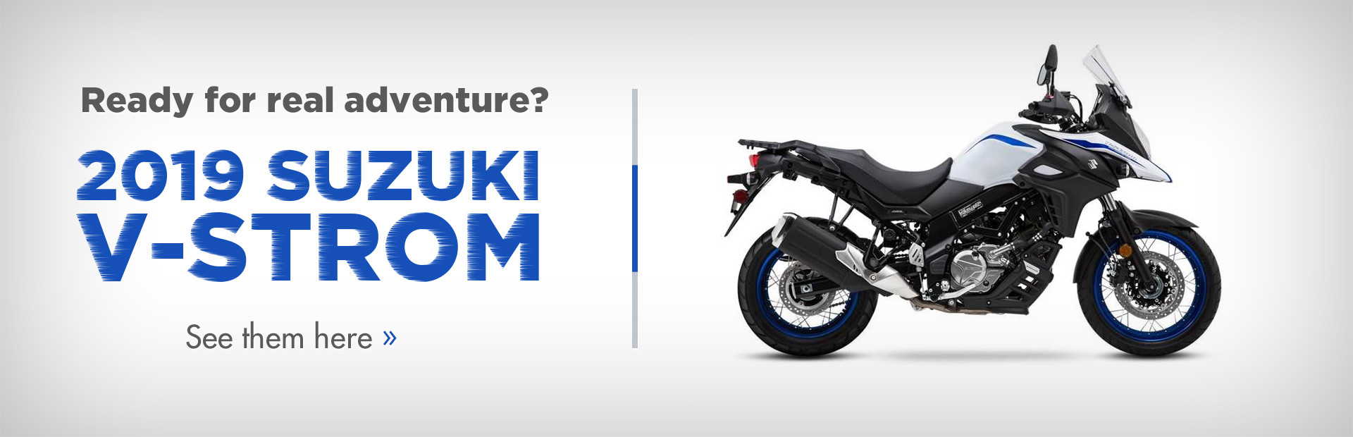 2019 Suzuki V-Strom: Click here to view the models.