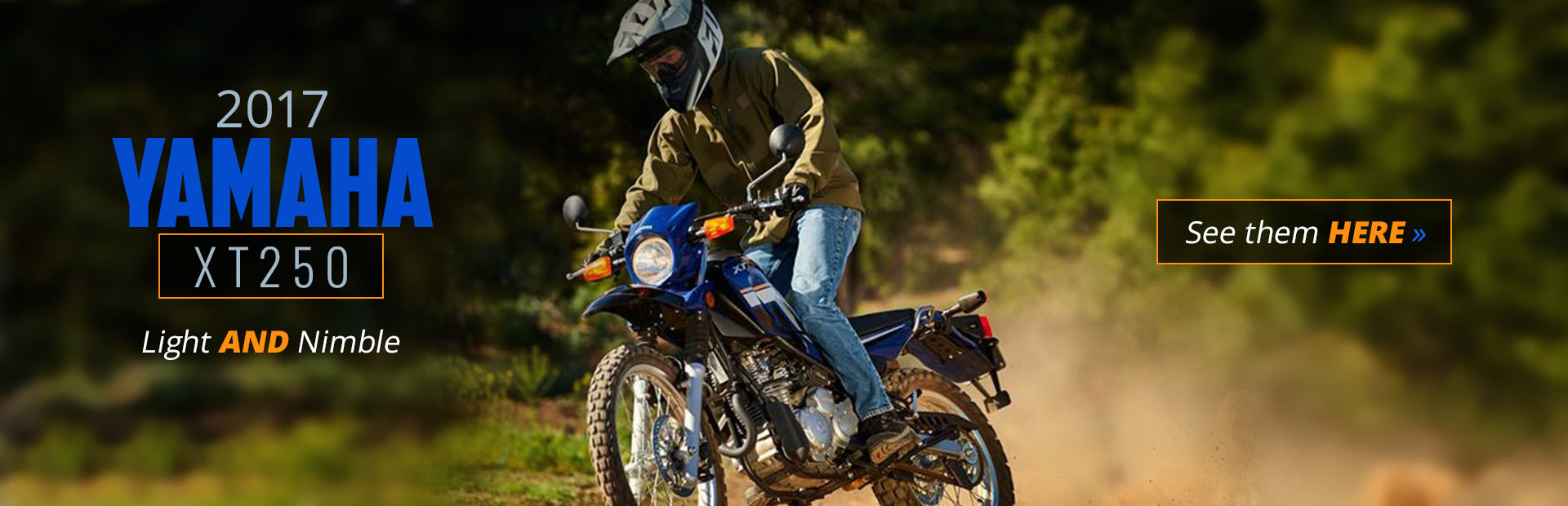 2017 Yamaha XT250: Click here to view our selection.