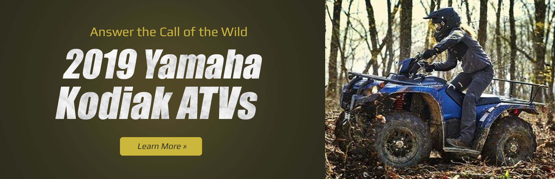 2019 Yamaha Kodiak ATVs: Click here to view the models.