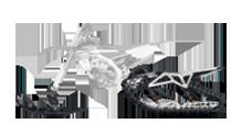 ARO™ 120 SX