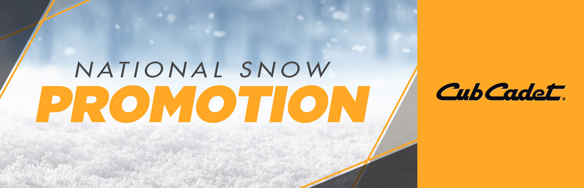 Cub Cadet: National Snow Promotion