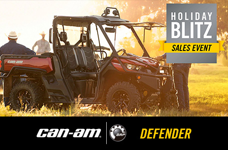 Holiday Blitz Sales Event - DEFENDER