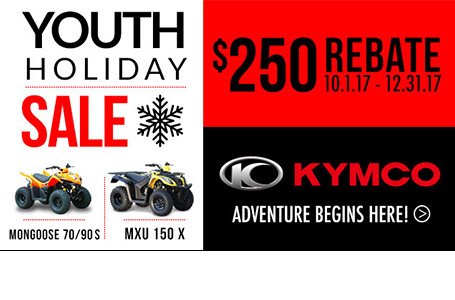 Youth ATV Holiday Season Sales Program
