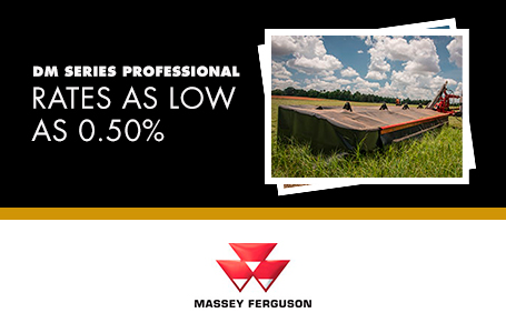 DM Series Professional - Rates as low as 0.50%