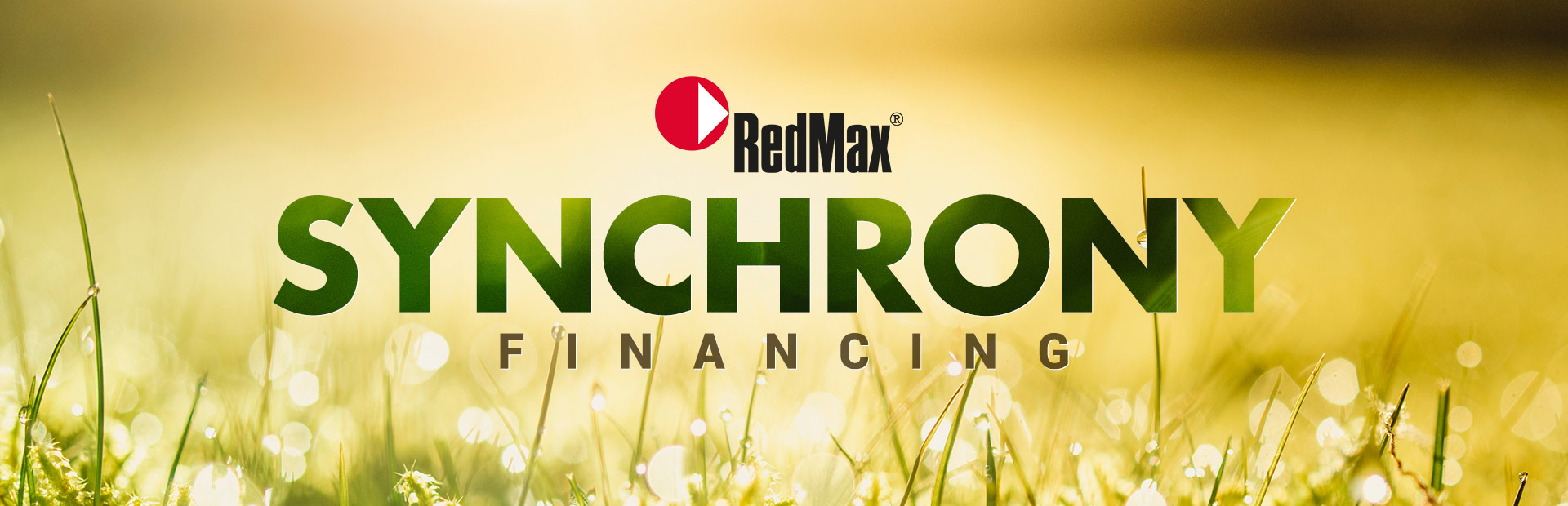 RedMax: Synchrony Financing