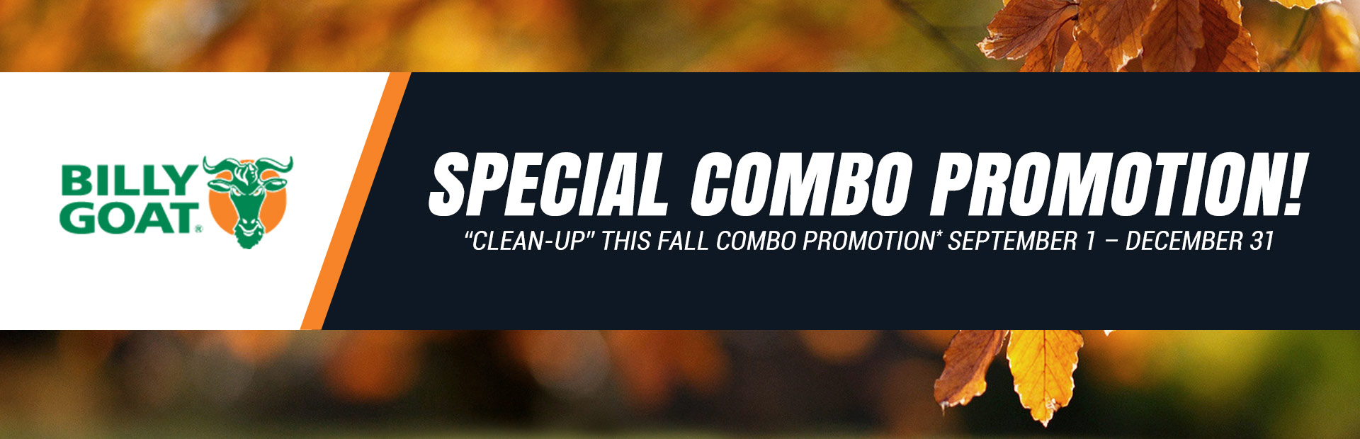 """Clean-up"" this Fall Combo Promotion"
